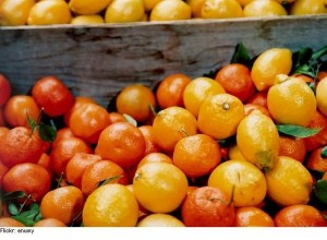 CITRUS fruits to lose weight